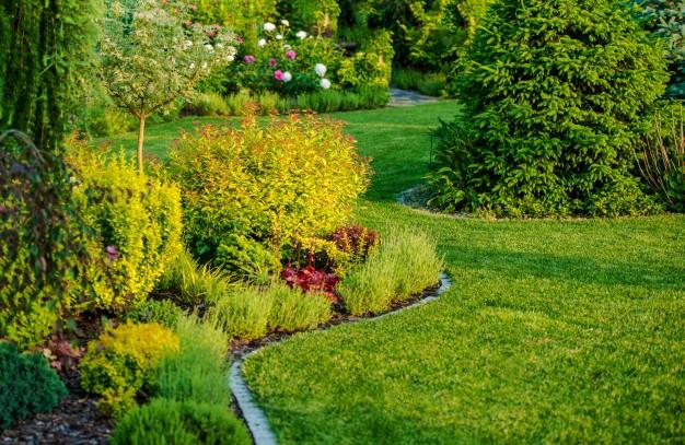 Comment choisir des plantes pour son jardin ?